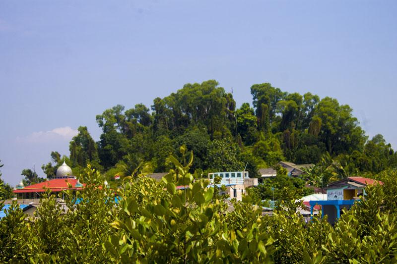 Rumah-rumah di tengah mangrove