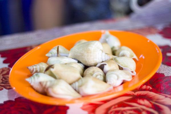Gonggong Rebus